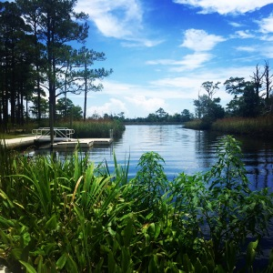 The Put-in at Ochlockonee River State Park